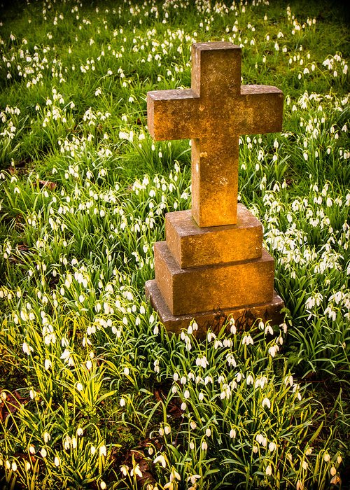 Bell Greeting Card featuring the photograph Gravestone With Snowdrops by Mark Llewellyn