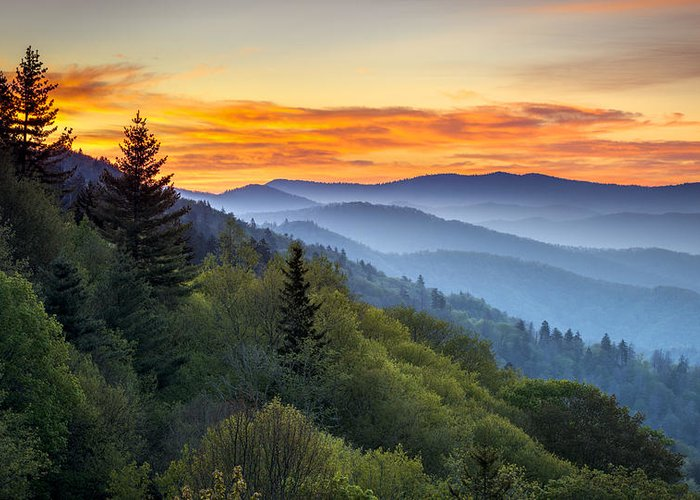 Great Smoky Mountains National Park Greeting Card featuring the photograph Great Smoky Mountains National Park - Morning Haze At Oconaluftee by Dave Allen