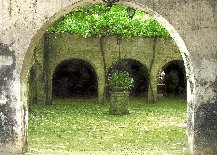 Jerez Greeting Card featuring the photograph Green Arch by Joshua Tennant