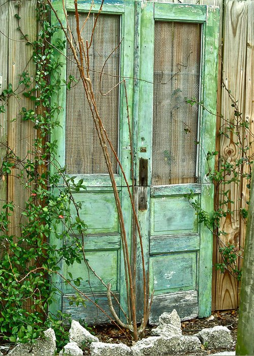 Old Doors Greeting Card featuring the photograph Green Cottage Doors by Angie Mahoney