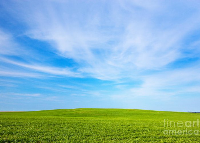 Grass Greeting Card featuring the photograph Green Field Landscape by Michal Bednarek