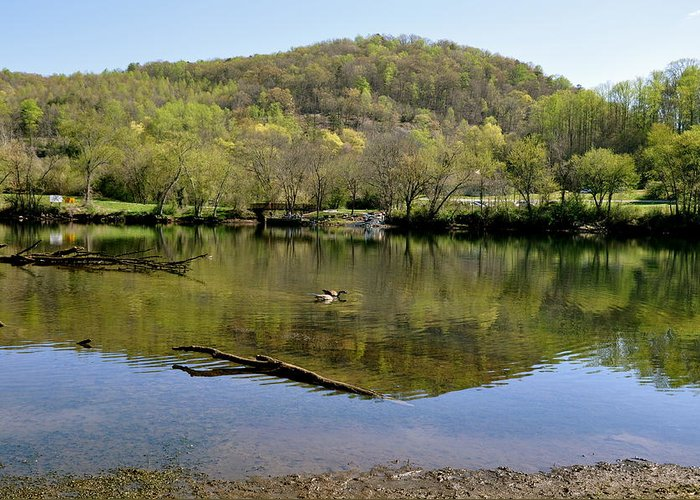 Wildlife Nature Mountain Water Suck Pond Shadow Trail Green Scenery Tree Sightseeing Beautiful View Greeting Card featuring the photograph Green Mountain by Sunny Phillips