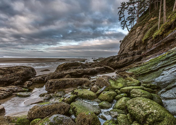 Horizontal Greeting Card featuring the photograph Green Stone Shore by Jon Glaser