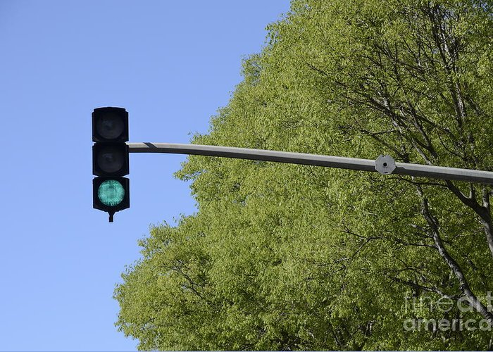 Authority Greeting Card featuring the photograph Green Traffic Light By Trees by Sami Sarkis