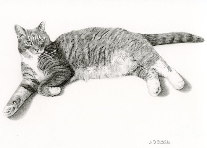 Lounge Drawings Greeting Cards