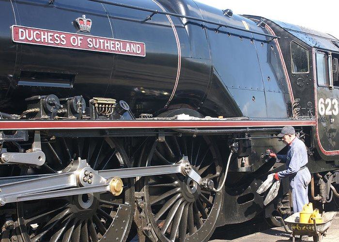 Steam Greeting Card featuring the photograph Grooming The Duchess by David Birchall