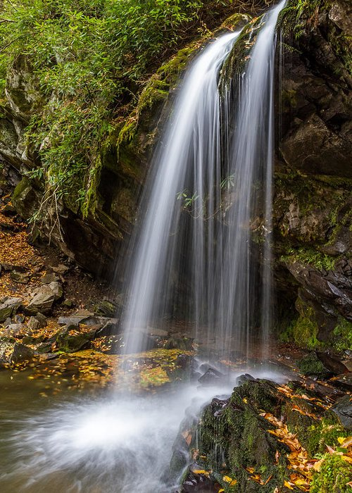 Tennessee Greeting Card featuring the photograph Grotto Falls Great Smoky Mountains by Pierre Leclerc Photography