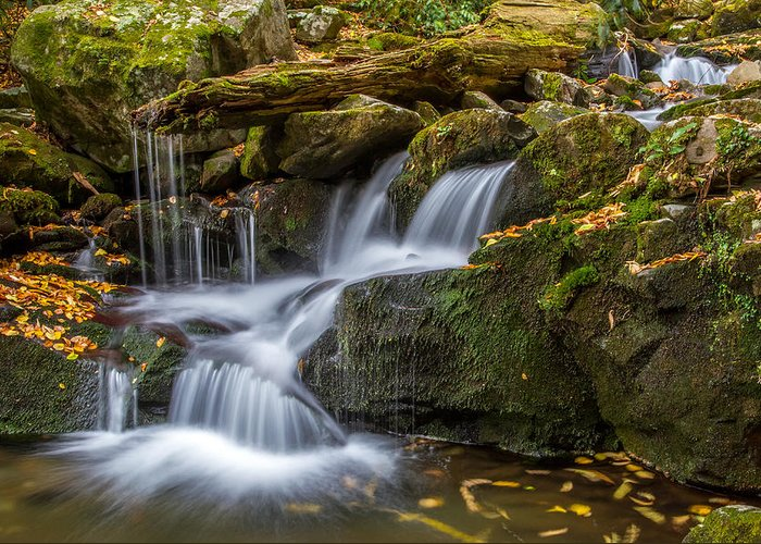 Tennessee Greeting Card featuring the photograph Grotto Falls Great Smoky Mountains Tennessee by Pierre Leclerc Photography