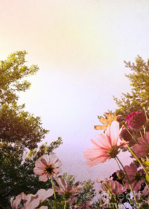 Pink Greeting Card featuring the photograph Ground View by Margie Hurwich