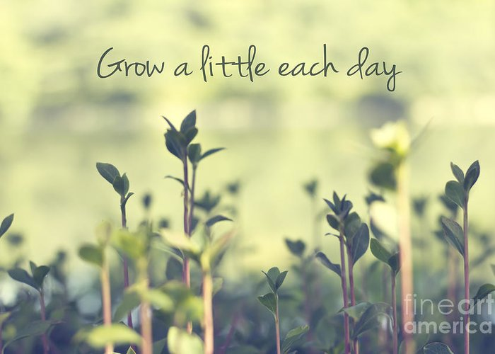 Grow Greeting Cards