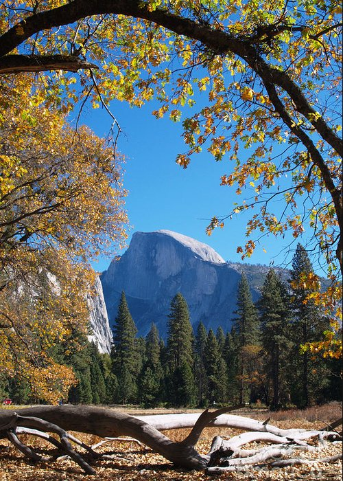 Landscape Greeting Card featuring the photograph Half Dome In Yosemite by Alex Cassels