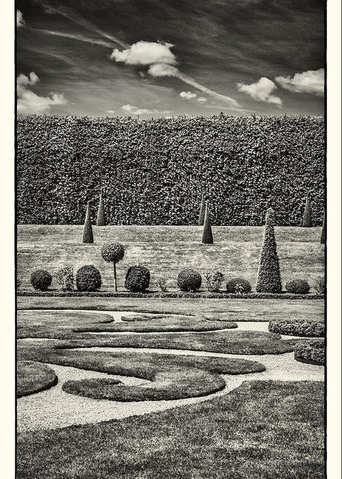 20th Centuary Garden Greeting Card featuring the photograph Hampton Court The Privy Garden Bw by Lenny Carter