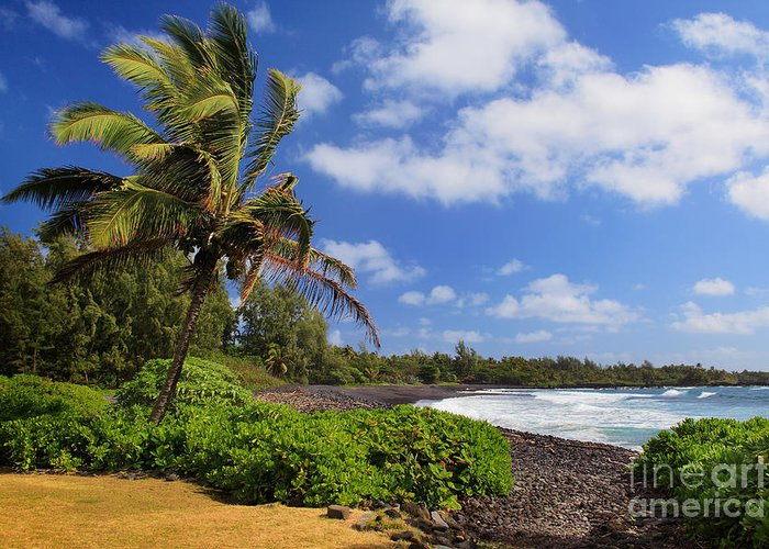 America Greeting Card featuring the photograph Hana Beach by Inge Johnsson