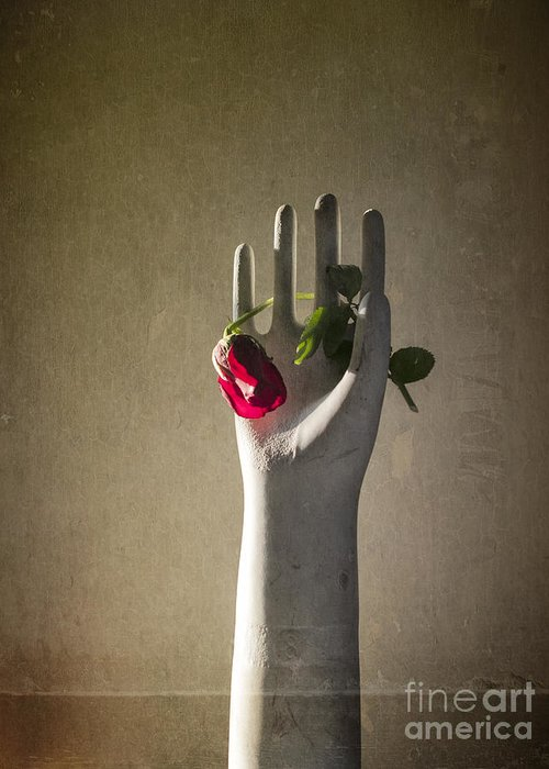 Hand Greeting Card featuring the photograph Hand Holding Rose by Terry Rowe