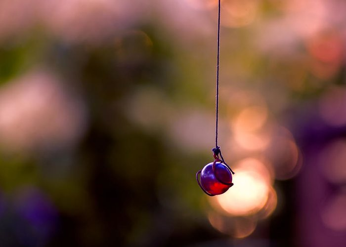 Hanging By A Thread Greeting Card featuring the photograph Hanging By A Thread by Bonnie Bruno