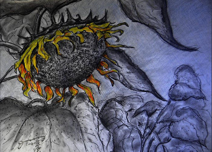 Hanging On To Life - Sunflower Greeting Card featuring the drawing Hanging On To Life - Sunflower by Jose A Gonzalez Jr