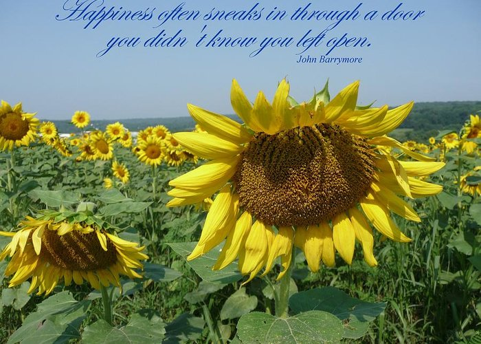 Sunflower Greeting Card featuring the painting Happiness by Viktoria K Majestic