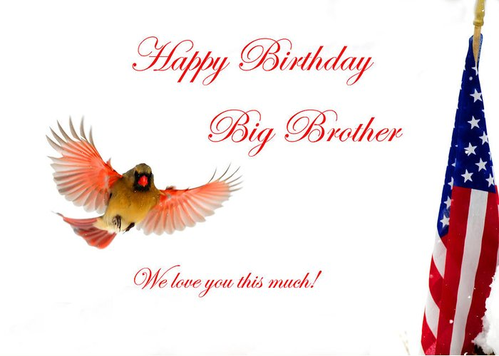 Happy Birthday Big Brother Greeting Card For Sale By Randall Branham