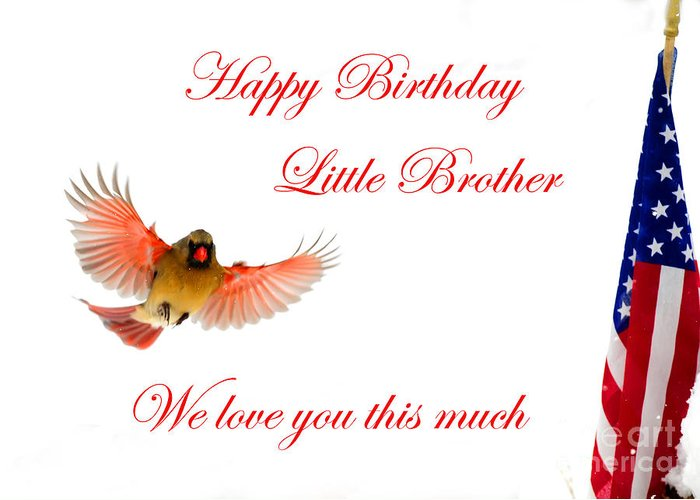 Happy Birthday Little Brother Greeting Card