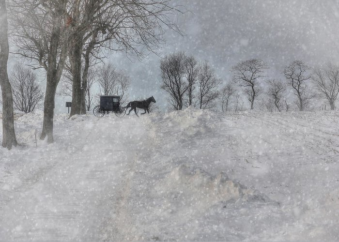 Winter Greeting Card featuring the photograph Happy Holidays From Pa by Lori Deiter