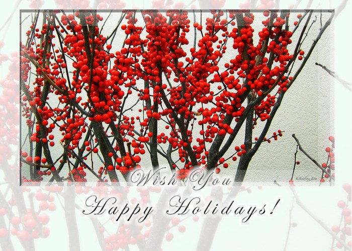 Christmas Greeting Card featuring the photograph Happy Holidays by Xueling Zou