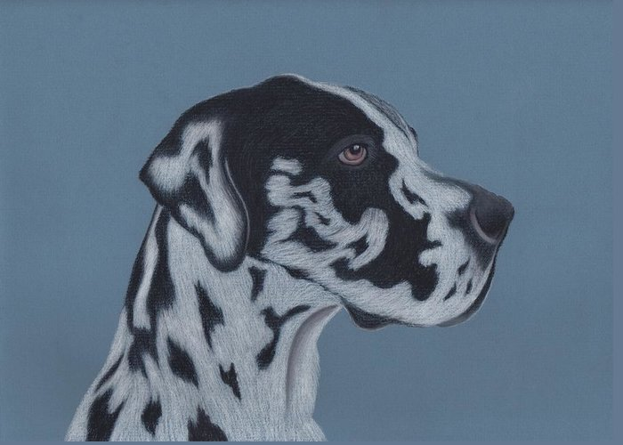 Great Dane Puppy Greeting Cards