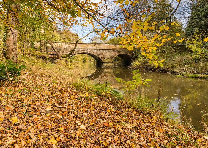 Northumberland Greeting Card featuring the photograph Hartford Bridge In Autumn by David Head