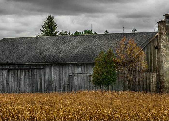 Barn Greeting Card featuring the photograph Harvest Season by Paul Freidlund