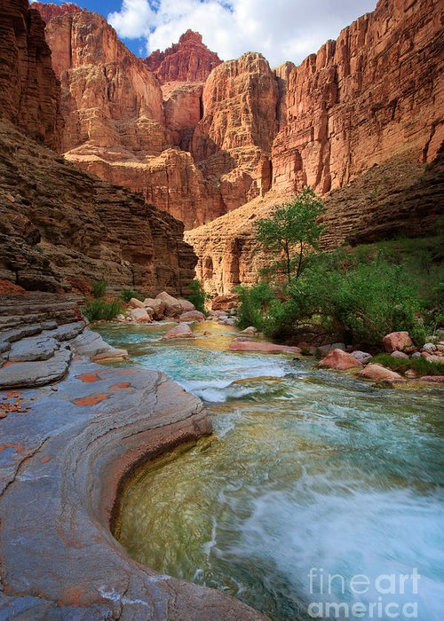 America Greeting Card featuring the photograph Havasu Creek by Inge Johnsson