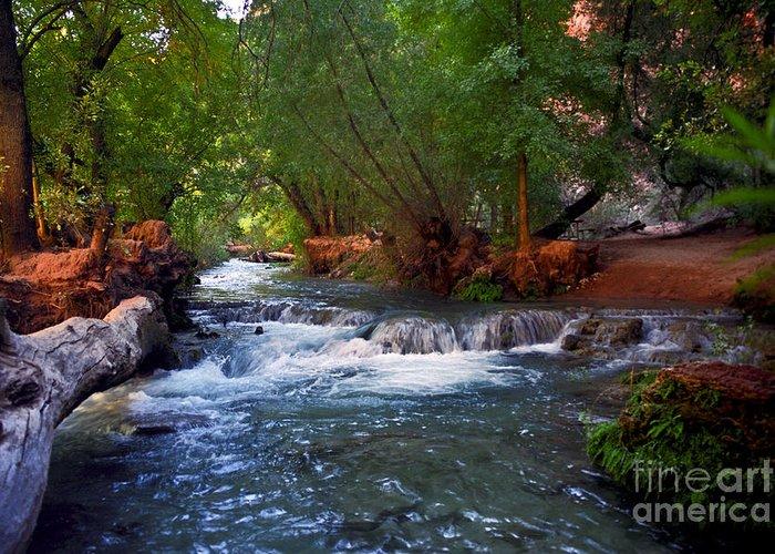 Arizona Greeting Card featuring the photograph Havasu Creek by Kathy McClure