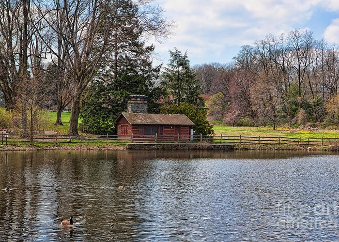 Haverford Duck Pond Greeting Cards