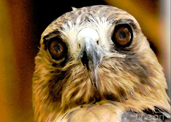 Hawk Greeting Card featuring the photograph Hawkeye by Lois Bryan