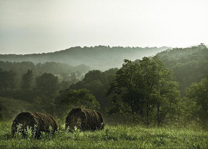 Hay Greeting Card featuring the photograph Hay Bales by Shane Holsclaw