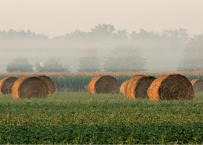Haybale Greeting Card featuring the photograph Haybales by Sarah Boyd