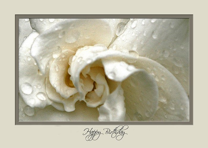 Flower Greeting Card featuring the photograph Hbd03 by Helen Ellis