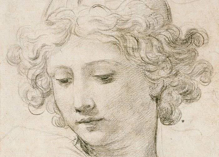 Young Boy Greeting Card featuring the drawing Head Of An Angel by Pietro da Cortona