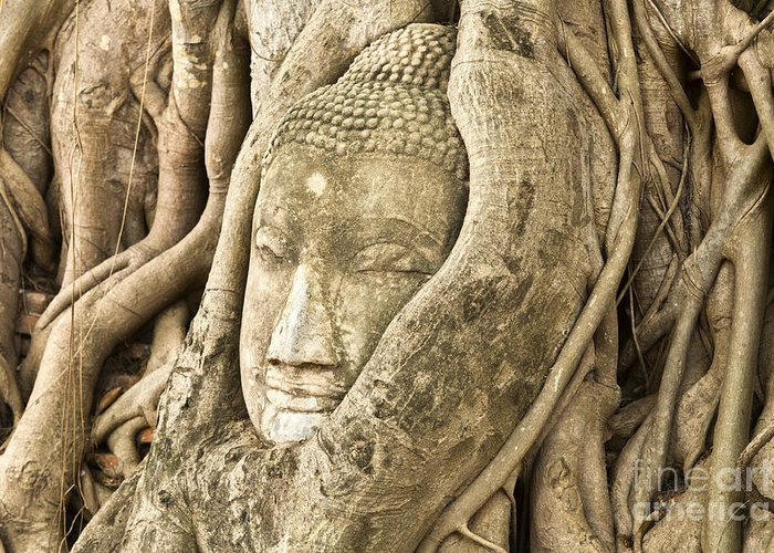 Ancient Greeting Card featuring the photograph Head Of Buddha Ayutthaya Thailand by Colin and Linda McKie