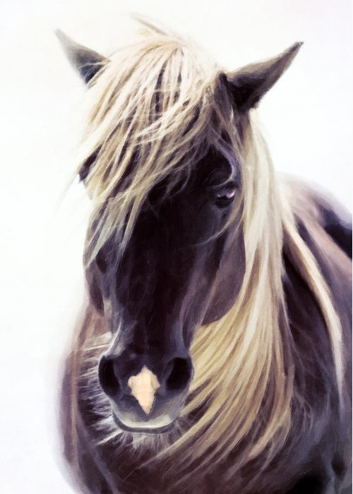Horse Lover Pastels Greeting Cards