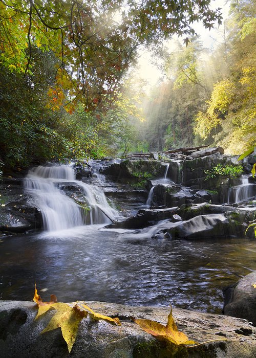Appalachia Greeting Card featuring the photograph Heaven's Light by Debra and Dave Vanderlaan