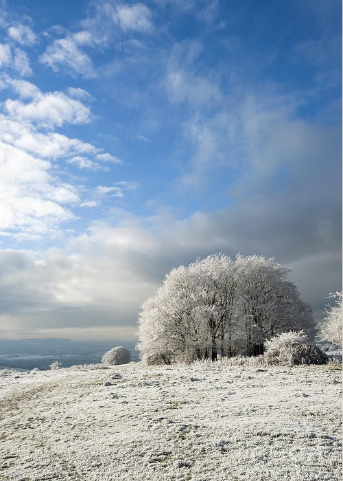 Annegilbert Greeting Card featuring the photograph Heavy Frost by Anne Gilbert