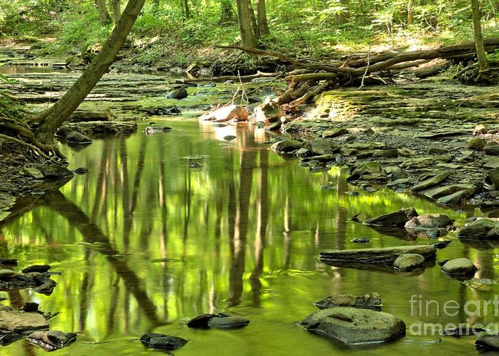 Hells Hollow Greeting Card featuring the photograph Hells Run Reflections by Adam Jewell