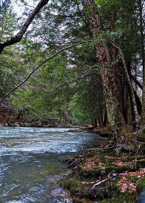 Pennsylvania Greeting Card featuring the photograph Hemlock Creek Edge by Jake Donaldson