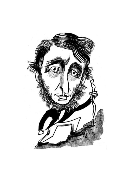 Henry David Thoreau Drawings Greeting Cards
