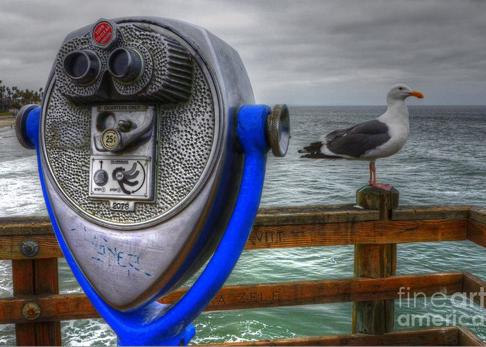 Oceanside Greeting Card featuring the photograph Hey Somebody Look At Me by Bob Christopher