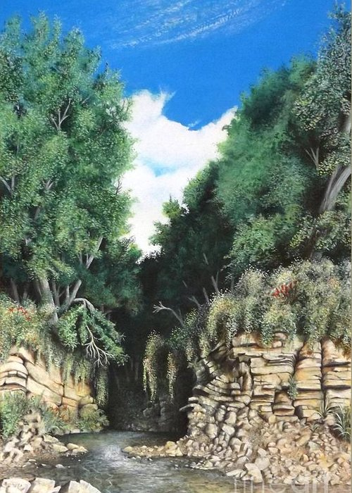 Drawing Of Canyon Greeting Card featuring the drawing Hidden Canyon by David Neace