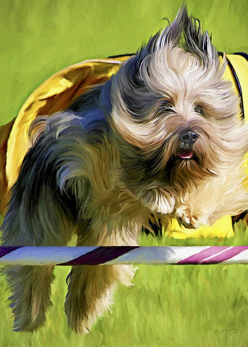 Silky Terrier Greeting Card featuring the painting High Flier by David Wagner