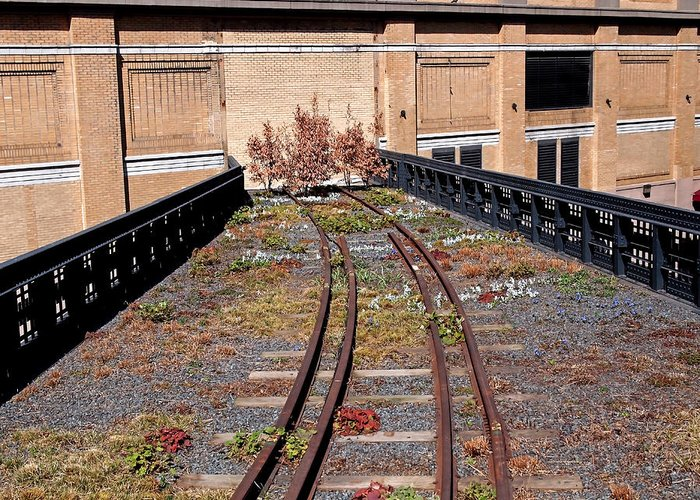 The High Line Greeting Card featuring the photograph High Line Spur by Rona Black