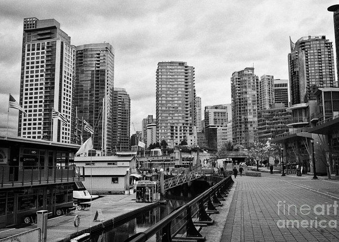 High-rise Greeting Card featuring the photograph high rise apartment condo blocks in the west end coal harbour marina Vancouver BC Canada by Joe Fox