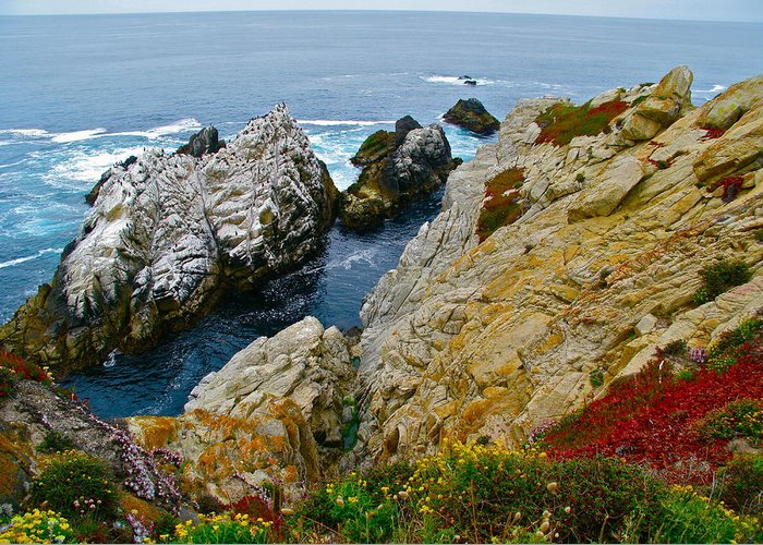Nature Greeting Card featuring the photograph Highway One by Michael Blesius