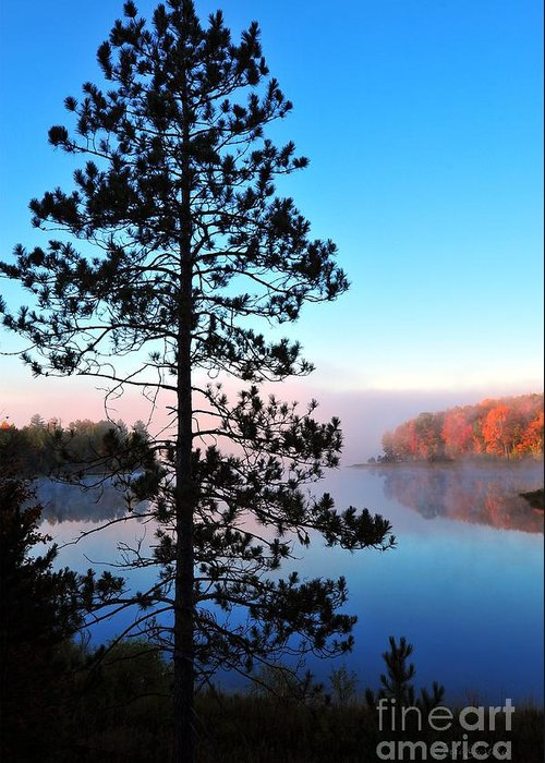 Pine Tree Greeting Card featuring the photograph Hilltop View Of Stoneledge Lake by Terri Gostola